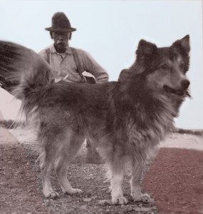 http://willmydoghateme.com/wp-content/uploads/2009/09/Earpie-Earp-Wyatt-dog-art-285x300.jpg