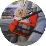 Dog car booster seat from www.canineconcepts.co.uk