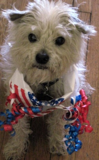 Happy Birthday and Happy Fourth of July, Frankie!